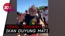 Bupati Nyentrik Tolitoli Perintah Tangkap Nelayan Pakai Pukat