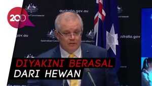Australia Beda dengan Amerika Serikat Soal Asal Usul Virus Corona