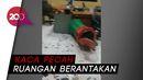 Gegara Divideo Saat Minum-minum, Oknum PPSU Rusak Kantor LH Mampang