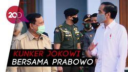Bersama Prabowo, Jokowi Tinjau Food Estate di Kalteng