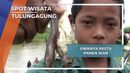 Acara Seru Pesta Panen Ikan, Tulungagung