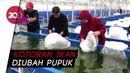 Aquagriculture, Inovasi Pertanian di Masa Pandemi COVID-19