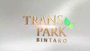 Transpark Bintaro 1