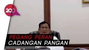 Prabowo Ikut Garap Food Estate: Backup Untuk Jamin Cadangan
