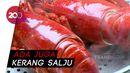 Bikin Laper: Canadian Lobster Berlumur Saus Salted Egg