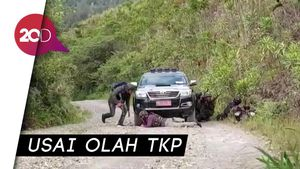 TGPF Penembakan Pendeta Diserang KKB di Papua, 2 Terluka Tembak