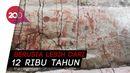 Lukisan Batu Usia Ribuan Tahun Ditemukan di Hutan Amazon
