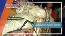 Angkutan di Pasar Induk Tangerang