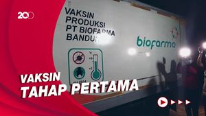 31 Ribu Vaksin Corona Sinovac Tiba di Bali