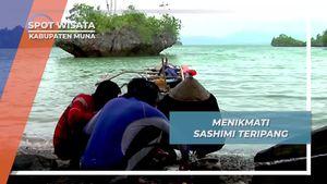 Kuliner Teripang Mentah, Disantap Segar Dari Laut Pulau Muna Sulawesi Tenggara