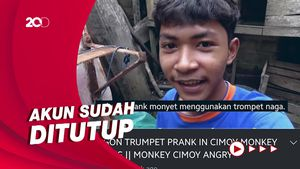 Viral Akun YouTube Penyiksa Monyet, Netizen Ramai-ramai Report
