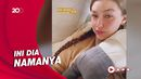 Gigi Hadid Akhirnya Ungkap Nama Anaknya dengan Zayn Malik