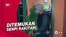 Nekat Tanam Ganja di Halaman Rumah, Petani di Bengkulu Diciduk Polisi
