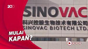 BPOM Setujui Vaksin Sinovac untuk Lansia, Berikut Aturannya...