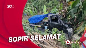 Mobil Pikap Tahu Bulat Terperosok Tabrak Pohon Pisang di Sukabumi