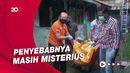 Sopir Angkot di Purwakarta Ditemukan Tewas Membusuk di Kontrakan