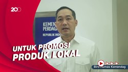 Mendag Klarifikasi Pidato Jokowi Promosikan Bipang Ambawang
