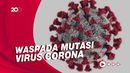 Menkes: Mutasi Baru Corona Banyak Ditemukan di Dermaga