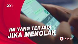 Kebijakan Baru WhatsApp Mulai Berlaku Hari Ini, Sudah Tahu?