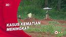 Pemkab Subang Siapkan Lahan untuk Pemakaman Jenazah Covid-19