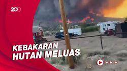 Kebakaran Hutan California Meluas ke Nevada