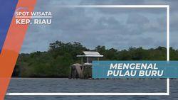 Nama Pulau Buru Berasal Dari Aktivitas Berburu Sultan Penyengat di Pulai ini