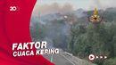 Ganasnya Amukan Api Hancurkan Hutan di Italia