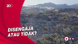 Italia Selidiki Penyebab Kebakaran Hutan di Pulau Sardinia