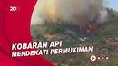 Kepanikan Warga Turki Selamatkan Diri dari Kebakaran Hutan