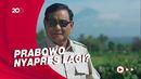 Waketum Gerindra: Banyak Kader Inginkan Prabowo Nyapres Lagi