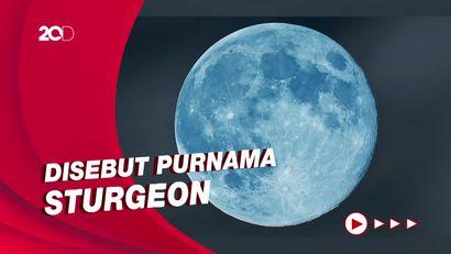 Asal-usul Fenomena Blue Moon yang Terjadi pada Hari Ini