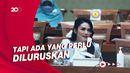 PDIP soal Krisdayanti Ungkap Gaji DPR: Nggak Ditegur, Justru Diapresiasi