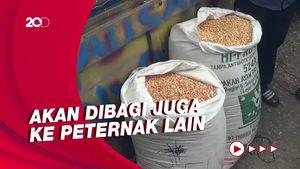 Suroto Terima Bantuan 20 Ton Jagung dari Jokowi