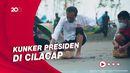 Momen Jokowi Tanam Mangrove-Lepas Tukik Sambil Nyeker di Cilacap