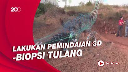 Kesiapan Arkeolog China Ungkap Misteri Fosil Dinosaurus di Lufeng