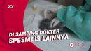 Tren Konsultasi Dokter Hewan di Halodoc Naik Selama Pandemi
